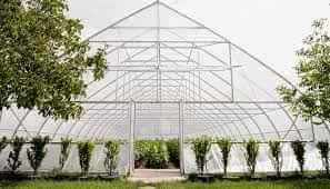 فروش ۳۸۰۰متر زمین با مجوز گلخانه نظراباد هشتگرد